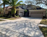20209 Moss Hill Way, Tampa image