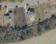 1228 Wood Stork Dr., Conway image