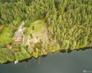 9709 117th Ave, Anderson Island image
