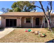 9902 N Connechusett Road, Tampa image