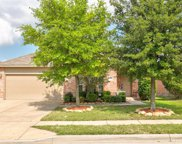12328 Dogwood Springs Drive, Fort Worth image