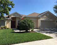 13441 Purple Finch Circle, Lakewood Ranch image