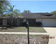 3943 Applegate Circle, Brandon image