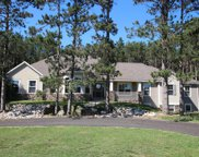 4341 Tracy Trail Court, Dorr image