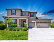 30330 Hackney Loop, Mount Dora image