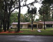 1314 BIG TREE RD, Neptune Beach image