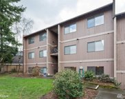 17430 Ambaum Blvd S Unit 28, Burien image