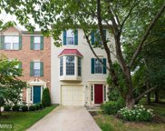 6311 MEADOW GLADE LANE, Centreville image
