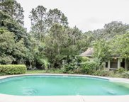 1215 CACTUS CUT RD, Middleburg image