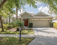 2426 Balforn Tower Way, Winter Garden image