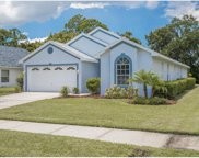 344 Fountainview Circle, Oldsmar image