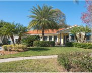 10 Plover Place, Palm Harbor image