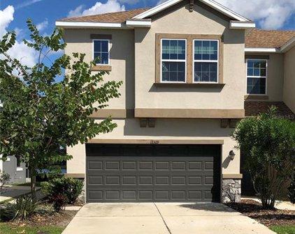 12329 Bayou Flats Lane, Tampa