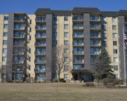5400 Walnut Place Unit 307, Downers Grove image