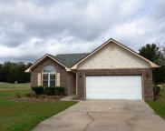 435 Meadow View Ct., Longs image