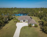 3089 Green Turtle, Mims image