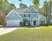 2124 Tall Grass Circle, Mount Pleasant image