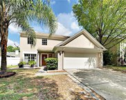9728 Cypress Shadow Avenue, Tampa image
