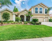 12018 Marblehead Drive, Tampa image