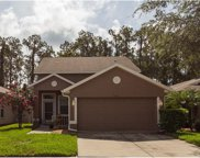 7212 Kendall Heath Way, Land O Lakes image