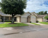 6520 Thicket Trail, New Port Richey image