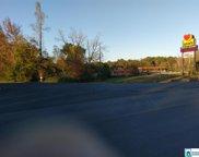 930 Lake Mitchell Road, Clanton image