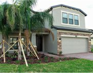 19510 Sea Myrtle Way, Tampa image