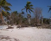 Lot 5w Cook Island, Big Pine image