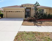 2606 Hobblebrush Drive, North Port image