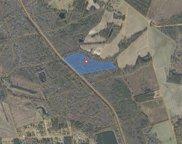 TBD Old Buck Creek Rd., Loris image
