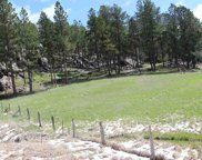 Tompkins Subd - Lot 13, Custer image