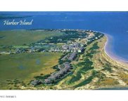 168 Harbor N Drive, St. Helena Island image