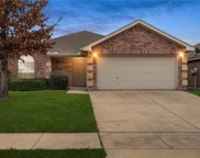 8316 Mule Deer Run, Fort Worth image