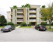 1352 Centre Court Ridge Drive Unit 201, Reunion image