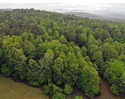 239 Double Springs Spur, Blairsville image