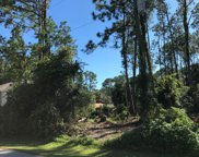 31 Bunker Lane, Palm Coast image