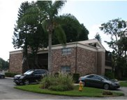 10453 Carrollbrook Circle Unit 222, Tampa image