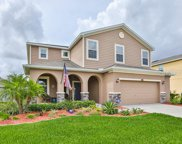 11623 Balintore Drive, Riverview image