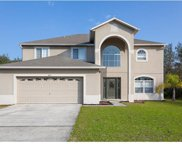 603 Amazon Court, Poinciana image