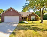 11130 Blue Spring  Court, Indianapolis image