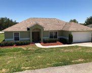 1029 Lakeview Oaks Drive, Minneola image