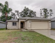 30613 Midtown Court, Wesley Chapel image