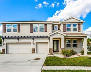 11711 Newberry Grove Loop, Riverview image