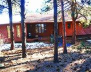324 Dawson Road, Pine image
