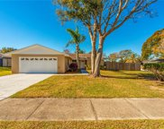 329 Oakhill Ct, Palm Harbor image