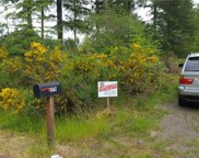 11542 Waddell Creek Rd SW, Olympia image
