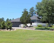 25233 Ridgeview Rd., Custer image