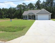 224 Old Dunn Ln., Conway image