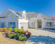 1124 Glossy Ibis Dr., Conway image