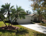 3713 Kingswood Court, Clermont image